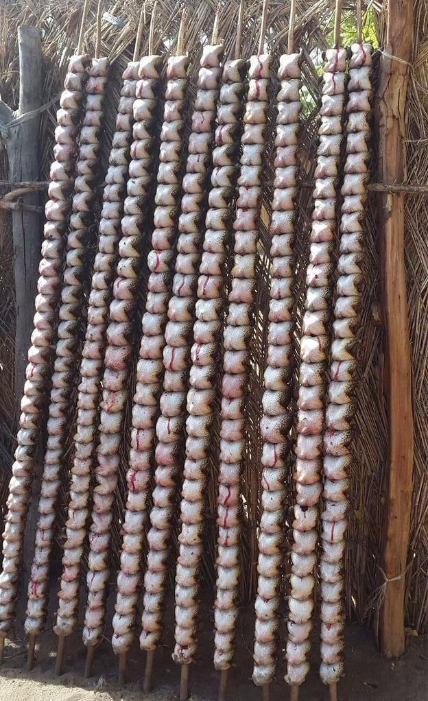 Nigeria: les grenouilles fumées seraient un délice culinaire pour certains(photos)