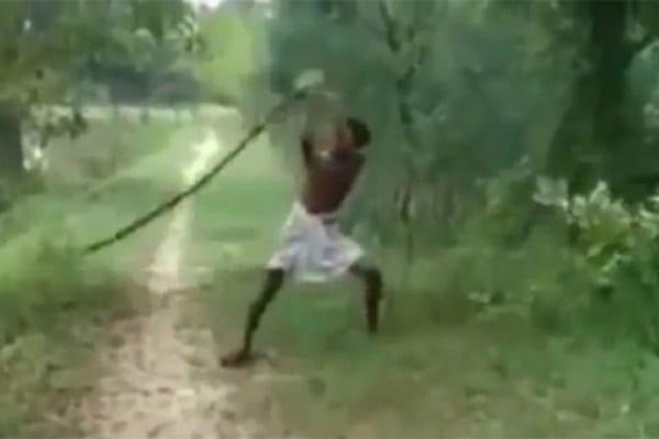 Un homme venge la mort de son fils en tuant un cobra avec ses mains nues: PHOTOS